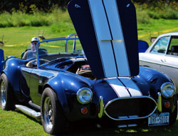 old shelby